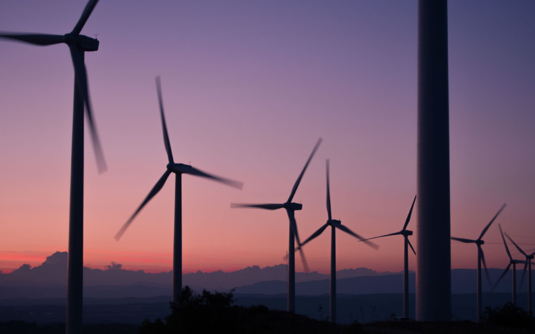 Aufruf zur Demonstration am 19. April 2021 – Stoppt den Windwahn!